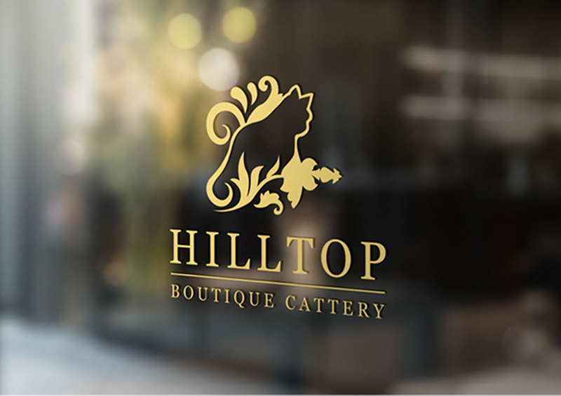 Visual Identity Design - Hilltop Boutique Cattery