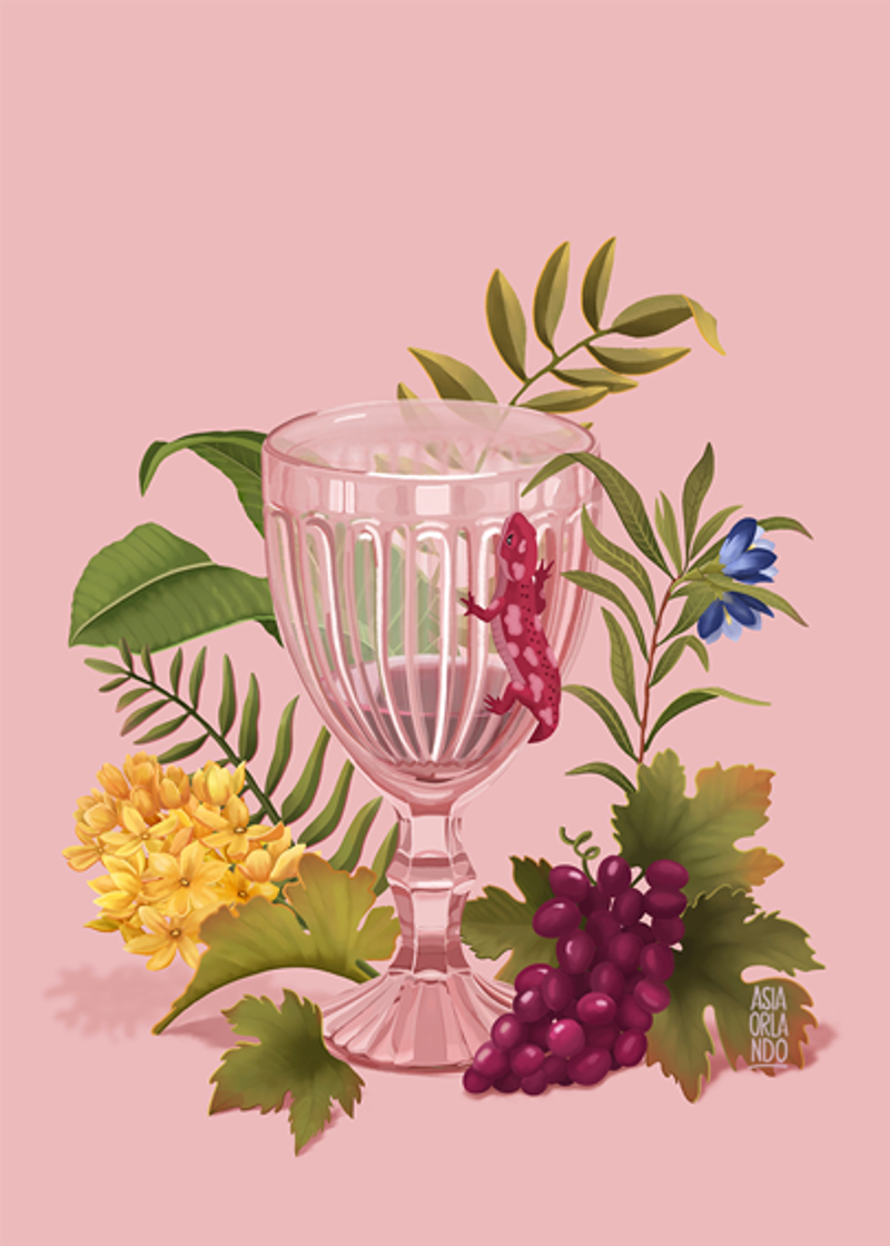 Lizard and a goblet