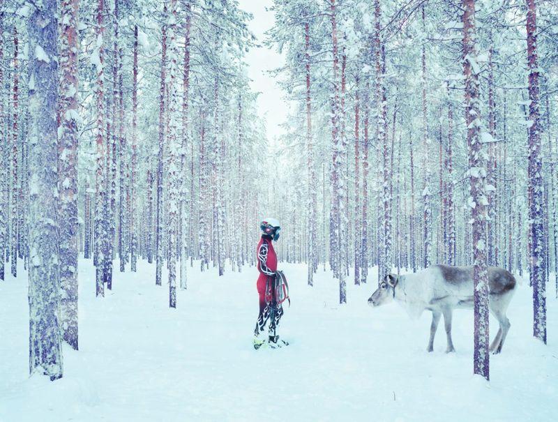 Todd Antony, Lapland