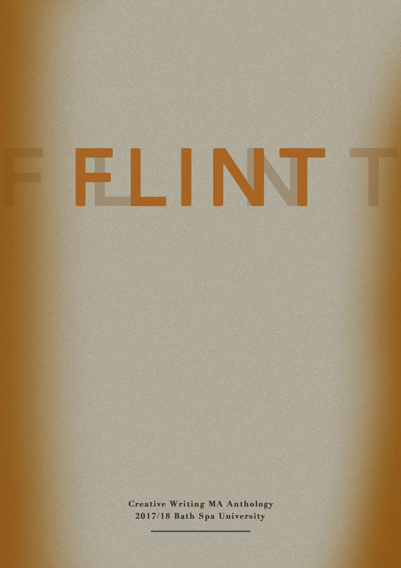 Book Cover Design FLINT