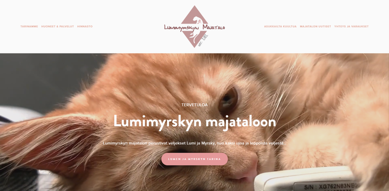 Website and logo design for a cat daycare