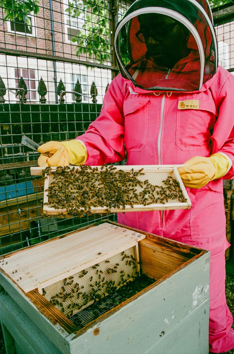 The Secret Life of Black Beekeepers