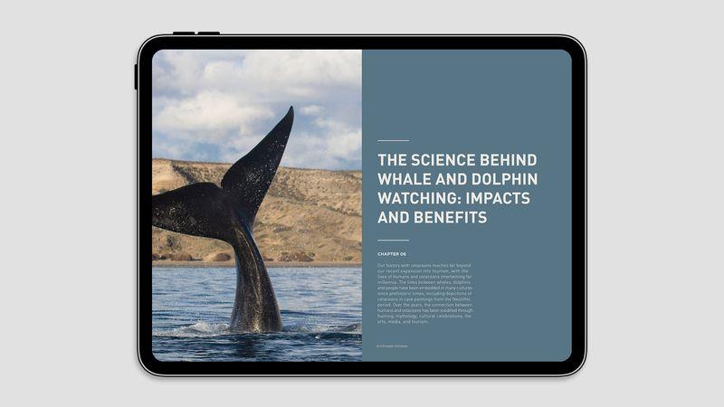 World Cetacean Alliance