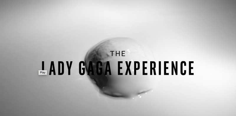The Lady Gaga Experience —