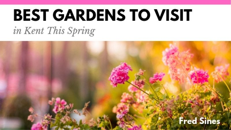 Best Gardens to Visit in Kent This Spring