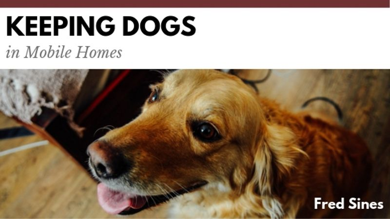 Keeping Dogs in Mobile Homes