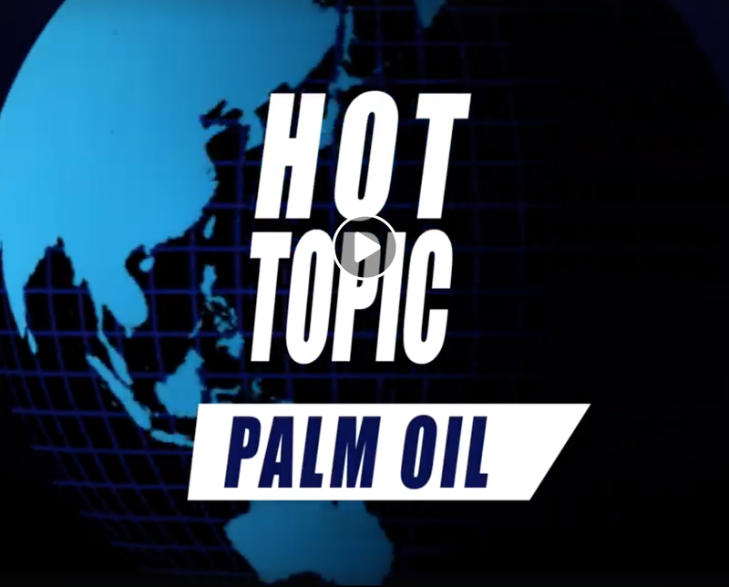 Hot Topic: Palm Oil