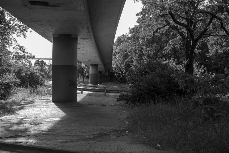 Tranquil Berlin