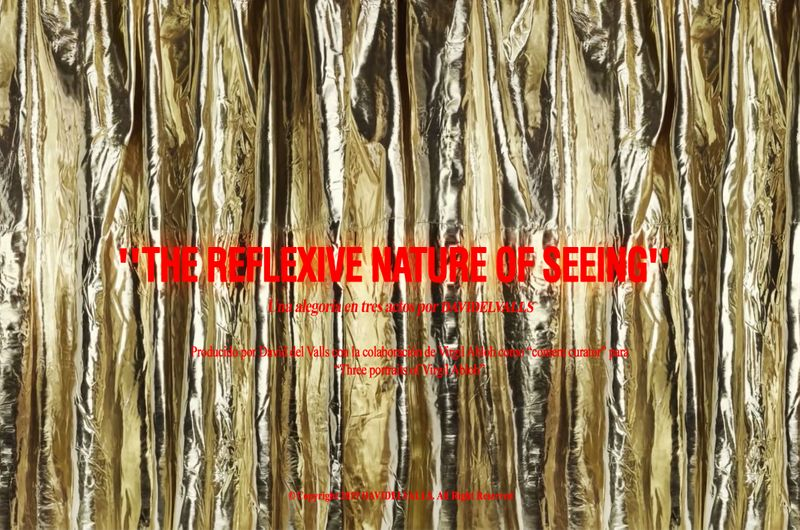 THE REFLEXIVE NATURE OF SEEING