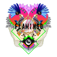 Flamingo Lily Ltd