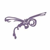 Dragonfly Digital Video Services logo