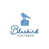 Bluebird Pictures logo