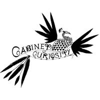 Cabinet of Curiosity Studio logo
