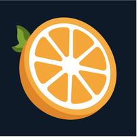 Citrus Ornge logo