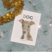 DOG MAGAZINE logo