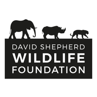 David Shepherd Wildlife Foundation (DSWF) logo