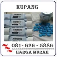 Agen Resmi { 082121380048 } Jual Obat Kuat Di Kupang logo