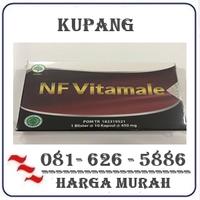 Agen Resmi { 082121380048 } Jual Obat Vitamale Di Kupang logo