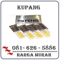 Agen Resmi { 082121380048 } Jual Obat Pembesar Penis Di Kupang logo