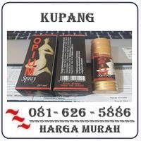 Agen Resmi { 082121380048 } Jual Obat Perangsang Wanita Di Kupang logo