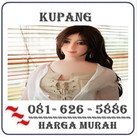 Agen Resmi { 082121380048 } Jual Boneka Full Body Di Kupang logo