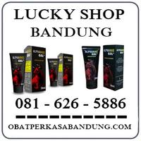 Bisa Cod { 0816265886 } Jual Alphamax Di Bandung Original logo