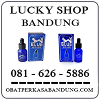 Toko Cod K24 { 0816265886 } Jual Blue Wizard Cair Bandung logo