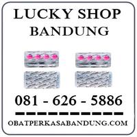 Toko Cod K24 { 0816265886 } Jual Lady Era Tablet Di Bandung logo