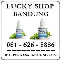 Toko Cod K24 { 0816265886 } Jual Zesty Plus Di Bandung logo