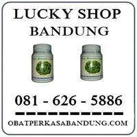 Toko Cod K24 { 0816265886 } Jual Minyak Daun Bungkus  Di Bandung logo
