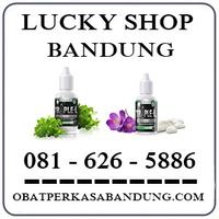 Toko Cod K24 { 0816265886 } Jual Triple L Di Bandung logo