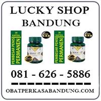 Toko Cod K24 { 0816265886 } Jual  Obat Maxvit Di Bandung logo