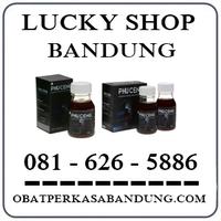 Toko Cod K24 { 0816265886 } Jual Madu Phuceng  Di Bandung logo