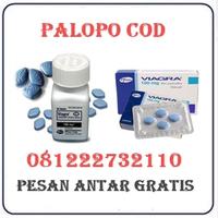 Agen Cod K24 { 081222732110 } Jual Obat Viagra Di Palopo Termurah logo