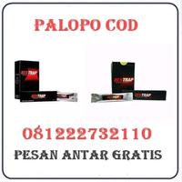Agen Cod K24 { 081222732110 } Jual Obat Bentrap Di Palopo Termurah logo