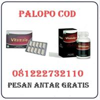 Agen Cod K24 { 081222732110 } Jual Obat Vitamale Di Palopo Termurah logo