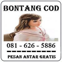 Klinik K24 Cod { 0816265886 } Jual Boneka Full Body Di Bontang Termurah logo