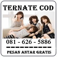 Agen Resmi { 0816272554 } Jual Boneka Full Body Di Cirebon Silikon Asli logo