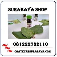 Toko Resmi { 081222732110 } Jual Daun Bungkus Di Surabaya Cod logo