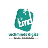 Techminds Digital logo