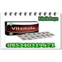 Jual Obat Vitamale Asli Di Bandung 085340319671 Tahan Lama logo