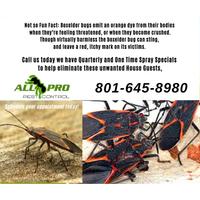 All PRO Pest Control logo