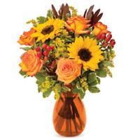 Send Flowers 24x7 - Same Day Flower Delivery Philadelphia PA logo
