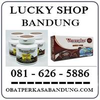 Toko Ahong { 0816265886 } Jual Obat Vmenplus Di Bandung Cicaheum logo