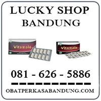 Toko Ahong { 0816265886 } Jual Obat Vitamale Nf Di Bandung Cicaheum logo