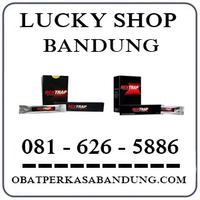 Toko Ahong { 0816265886 } Jual Obat Bentrap Di Bandung Cicaheum logo