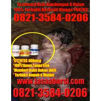 Obat Aborsi Asli Dan Obat Penggugur Kandungan Herbal Alami logo