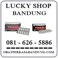 Ahong Cicaheum { 0816265886 } Jual Vitamale Di Bandung logo