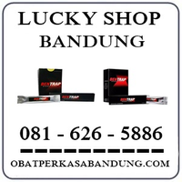Ahong Cicaheum { 0816265886 } Jual Bentrap Di Bandung logo