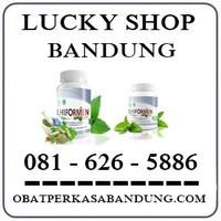 Ahong Cicaheum { 0816265886 } Jual Lhiformen Di Bandung logo